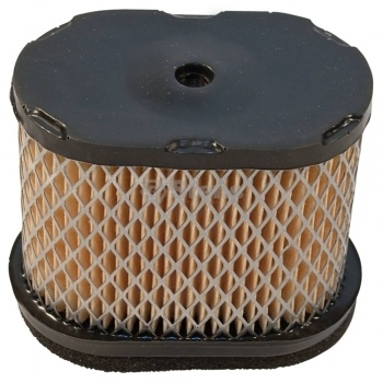 STENS Air Filter Combo 100-093 for Briggs & Stratton 697029
