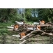STIHL Petrol Chainsaw MS 171