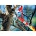 WOLF GARTEN Multi-Change® RCM  Anvil Tree Lopper